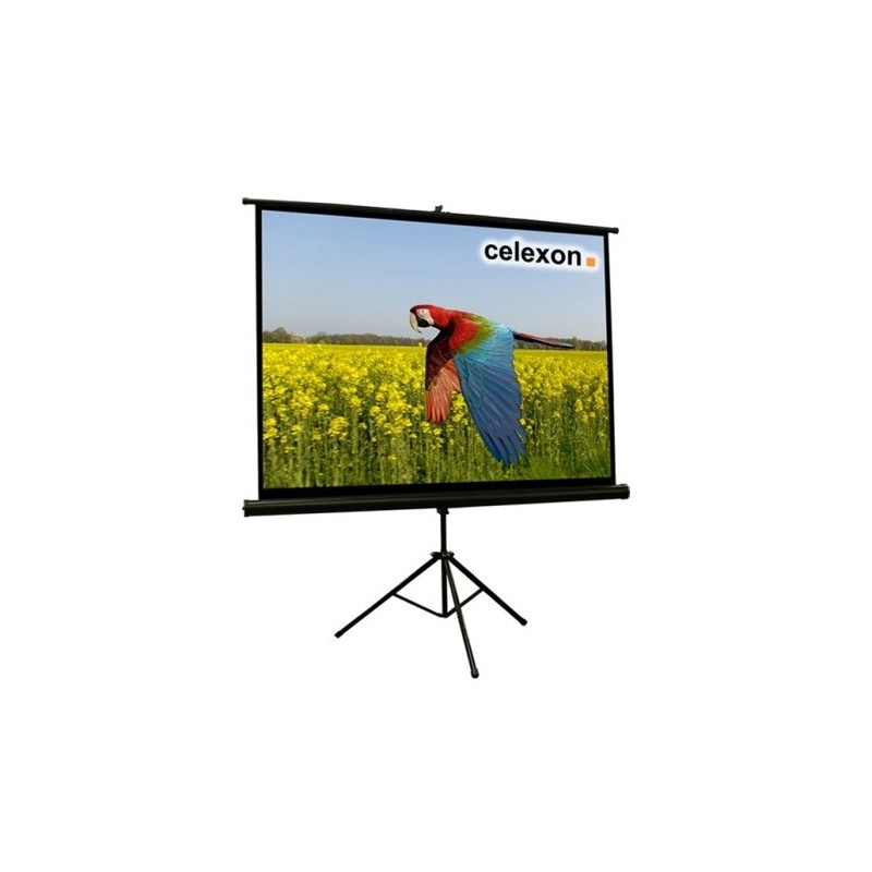 "PHILIPS 55OLED803/12 Android TV 55"" OLED UHD 4K Ultra sottile"